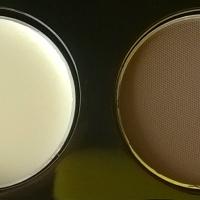 Avon - kit sopracciglia perfette/ perfect eyebrow kit in Soft Brown (review)